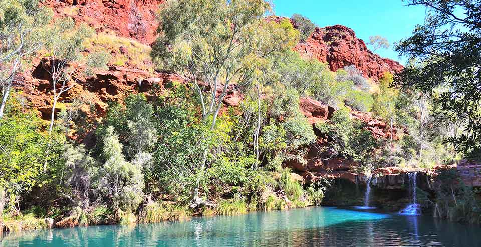 Travel-2---karijini-np-fern-pool-2